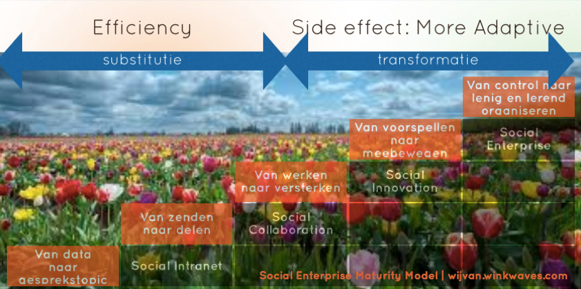 social enterprise maturity model